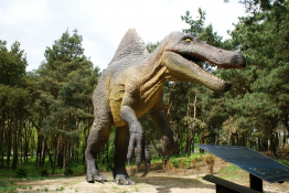Solec Kujawski Atrakcja Park tematyczny JuraPark